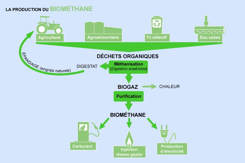 ¤ V2020 ¤ Topic Officiel - Page 2 Biomethane-infographie-v1